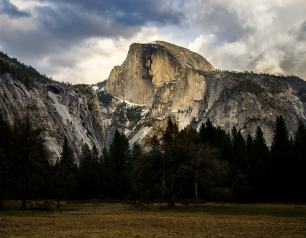 Half-Dome from the meadow